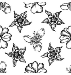 seamless pattern with black and white impatiens vector image