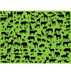 big collection of mix animals vector image