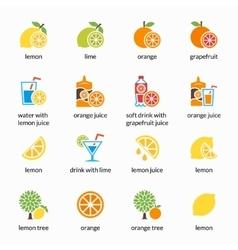 Orange lemon lime and grapefruit icons vector
