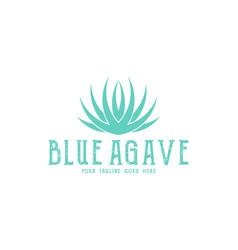 blue agave logo vector image