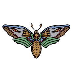 Deaths head moth colorful concept vector