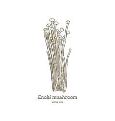edible enoki mushrooms enokitake cartoon vector image