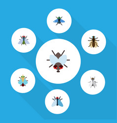 Flat icon fly set of buzz tiny fly and other vector