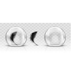 Glass dome or sphere and black feather realistic vector