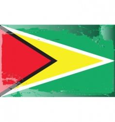 Guyana national flag vector image