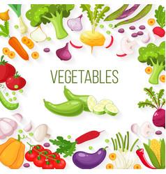 frame of fresh vegetables for your design vector image vector image