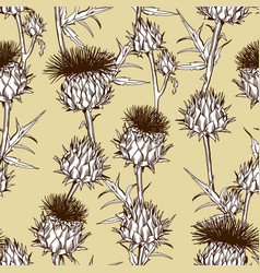 Seamless pattern with onopordum acanthium vector