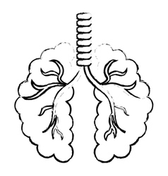 abstract lungs icon image vector image