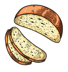 bread in engraving style design element vector image