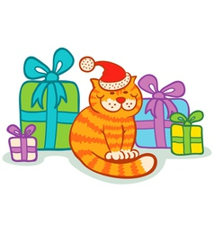 Cat gifts vector image