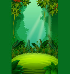 clean and green forest vector image