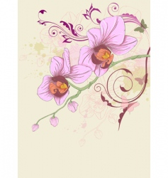 floral patterns vector image vector image
