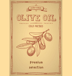 olive oil label retro style with olive branch vector image