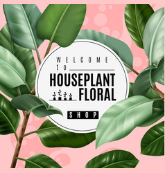 Realistic house plant poster vector