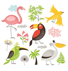 set an exotic birds vector image