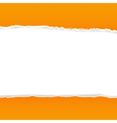 Orange Rip Paper vector image