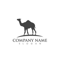 Camel icon logo template design vector