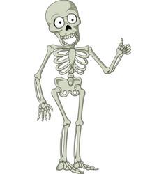cartoon skeleton giving thumb up vector image