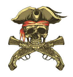 pirate skull and vintage pistols vector image