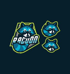 raccoon mascot logo design vector image