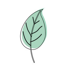 watercolor silhouette of simple leaf plant vector image