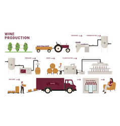 Wine production process stages infographic vector