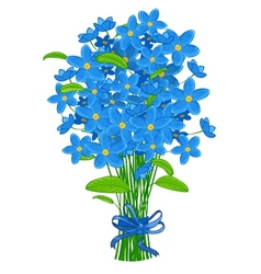 Bouquet forget-me-not flowers vector