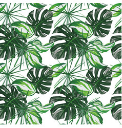 green tropical leaves seamless white background vector image