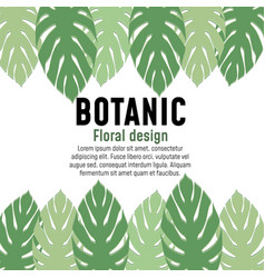 tropical leaves collection vector image