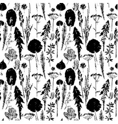 Abstract botanical seamless pattern herbal vector