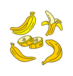 banana fruit design graphic template vector image