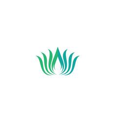 beauty flower logo vector image