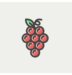 Bunch of grapes thin line icon vector image