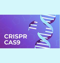 Crispr cas9 dna gene editing tool genes vector
