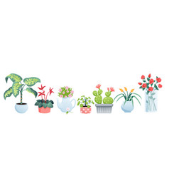 house plants for home garden vector image
