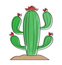 isolated retro cactus icon vector image