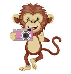 monkey with camera on white background vector image