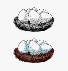 nest eggs farm product engraved hand drawn vector image