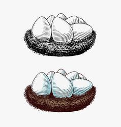 Nest eggs farm product engraved hand drawn vector