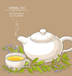 Sage tea vector