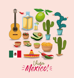 viva mexico colorful poster with traditional vector image