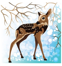 Young deer in a winter forest vector