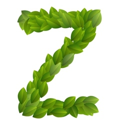 Letter Z of green leaves alphabet vector image