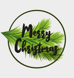 christmas card with fir tree branche and merry vector image vector image