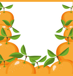 Colorful background of realistic orange fruits vector