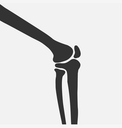 human knee joint side view vector image