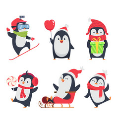 penguin characters cartoon winter vector image