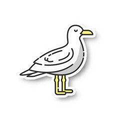Seagull patch vector