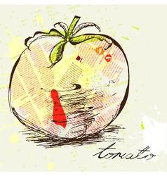 stylized tomato vector image