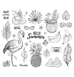 Summer tropic sticker set flamingo cocktail vector